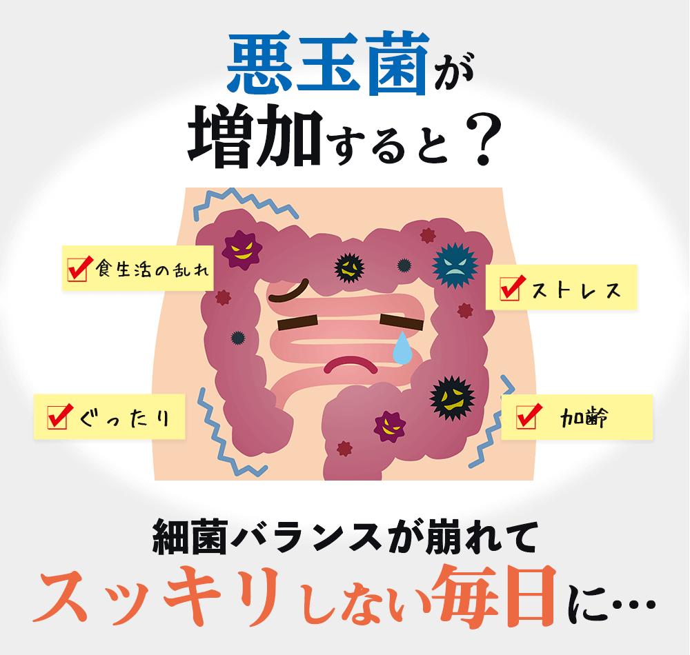 悪玉菌が増加すると?