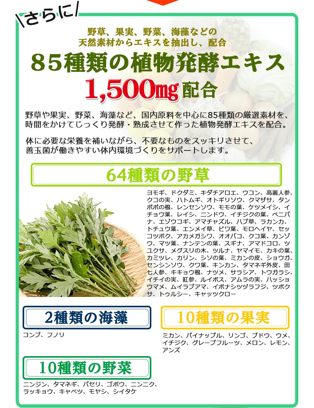 85種類の植物醗酵エキス