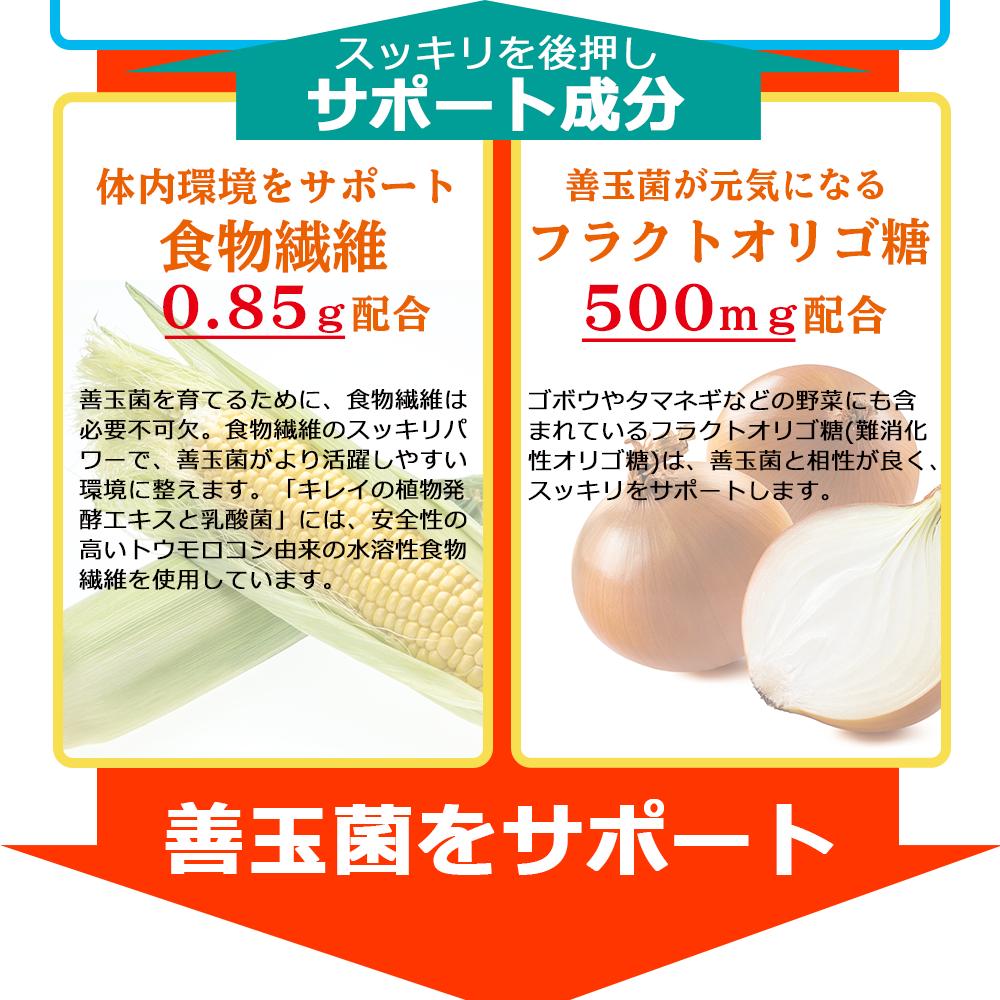 食物繊維 フラクトオリゴ糖